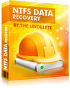 NTFS Data Recovery Standard License