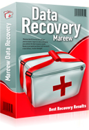 Mareew Hard Drive Recovery Standard License